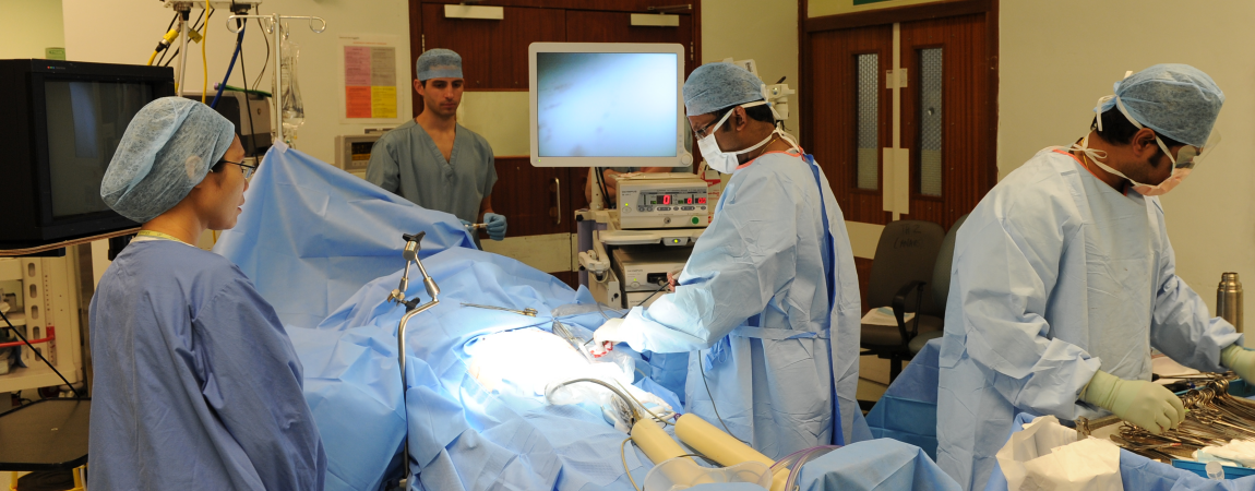 Members of the clinical team in an operating theatre